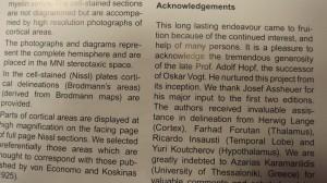 Atlas del Cerebro. Aquí se cita el trabajo del profesor Insausti.