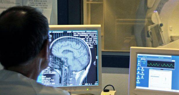 Investigación cerebral